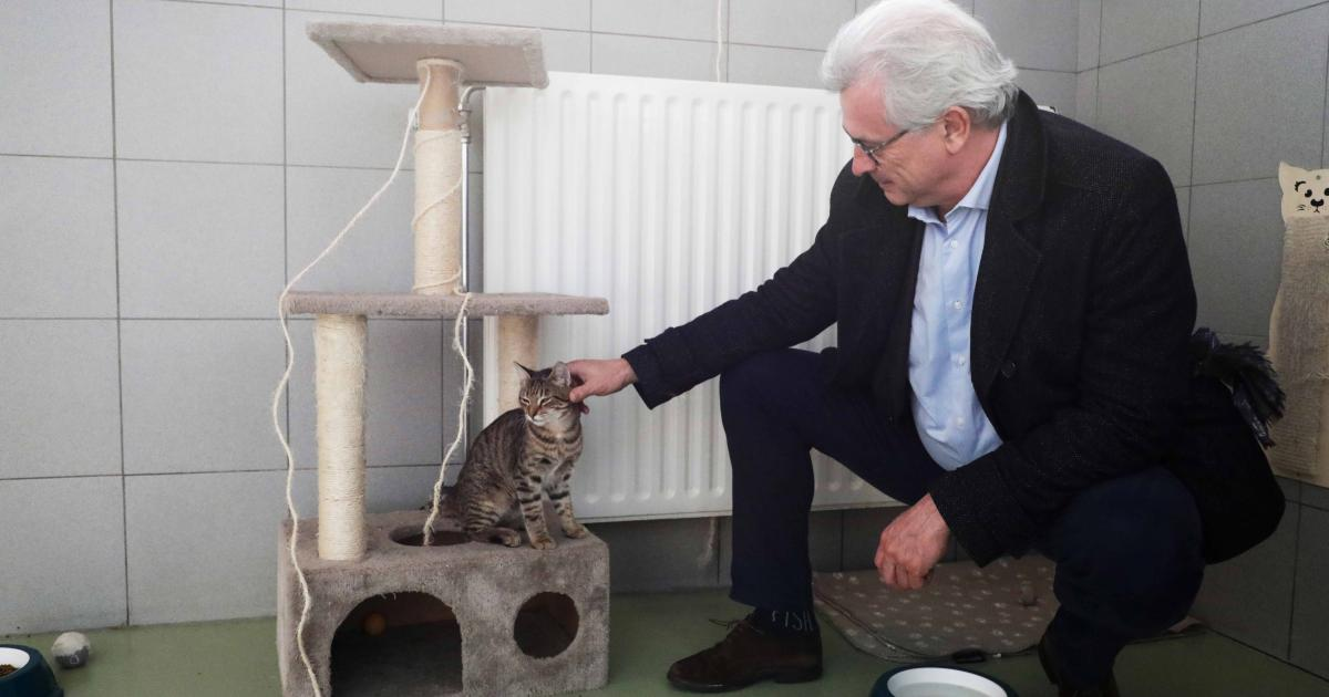 Ministre_Clerfayt_Chat_bien être animal